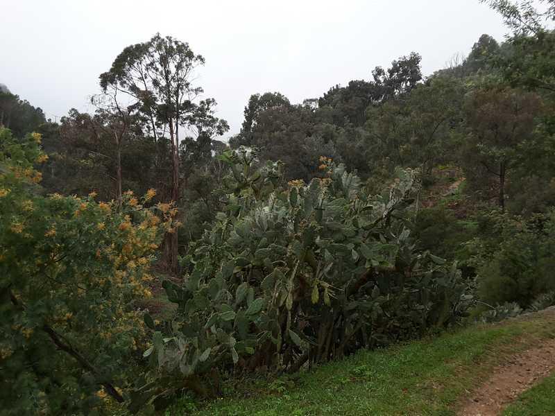 Le parc de la Vernède Mandelieu-La Napoule